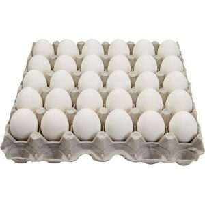30x White chicken egg 1 Tray